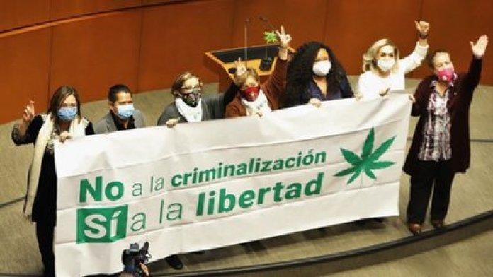 Senators celebrated the approval of the recreational use of marijuana (Photo: Cuartoscuro)