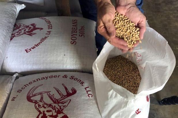 Se sube 3 puntos porcentuales las retenciones para los porotos de soja, de 30% a 33%