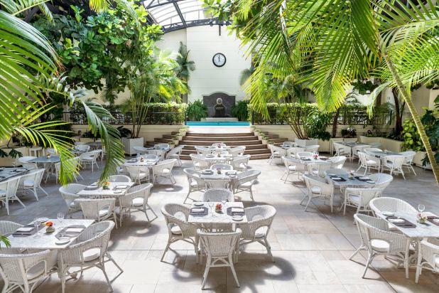 Eljardín de invierno se ofrece como un espacio único de luz y vegetación para disfrutar de las especialidades del chef durante el almuerzo o cena, o bien tomar el té acompañado de dulces y salados