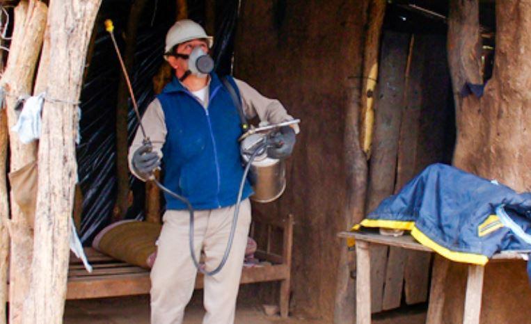 La desinfectación de las viviendas rurales es clave para detener el avance de la vinchuca