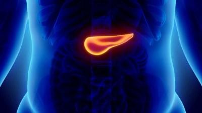 Nuevas estrategias en la búsqueda de una cura para el cáncer de páncreas