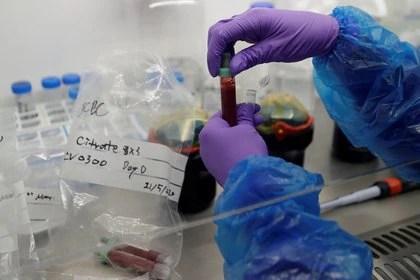 Los investigadores descubrieron los componentes en un amplio proyecto en el que analizaron las secuencias genéticas de unas 100.000 bacterias y comprobaron que cientos de ellas generaban la viperina (REUTERS)