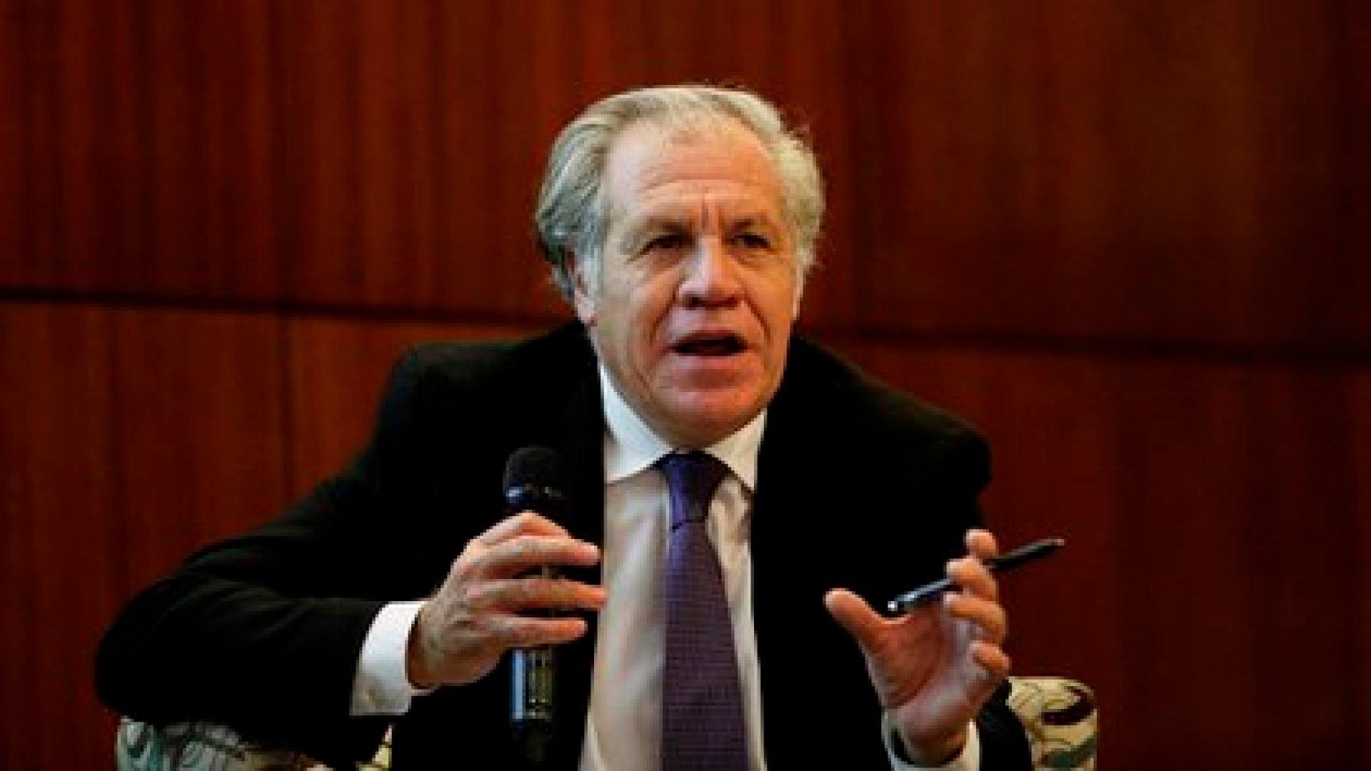 El secretario general de la Organización de Estados Americanos (OEA), Luis Almagro. EFE/ Bienvenido Velasco/Archivo