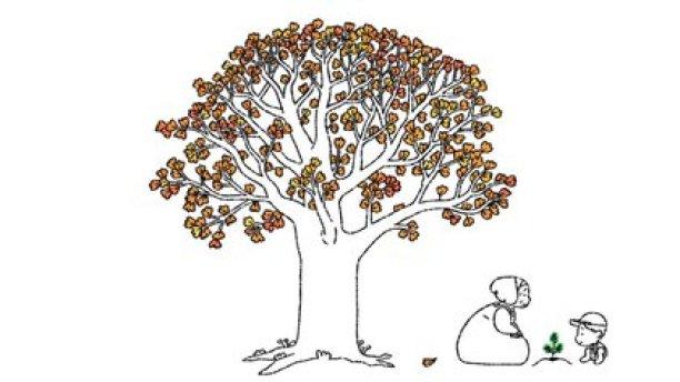 En el video se vean a diferentes personas platanar semillas que devienen en árboles frondosos (captura de pantalla de YouTube)
