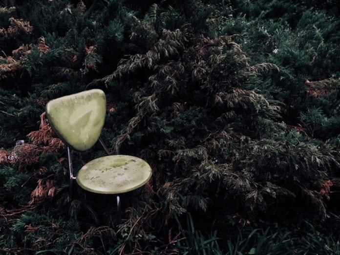 """El tercer lugar fue para XiangQi Kong (China) con """"Green in a Corner"""" (Verde en un rincón), una foto que tomó en Beijing, China con un iPhone 6."""
