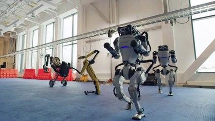 Spot, Handle e Atlas si muovono al ritmo della musica (Boston Dynamics tramite REUTERS)