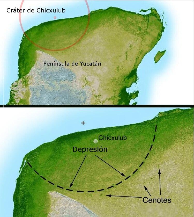 El área donde cayó el asteroide en Yucatán, México dejó el cráter de Chicxulub Foto: Wikipedia