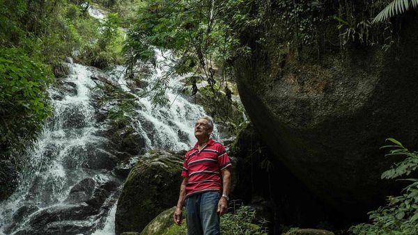 Plantó 50 mil árboles a 200 kilómetros de San Pablo y hoy vive en su propia selva (Tommaso Protti/The Guardian)
