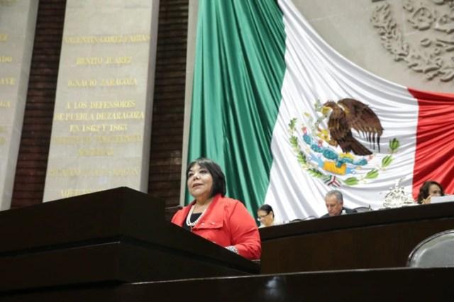 Martha Hortencia Garay Cadena del PRI (Foto: cortesía)