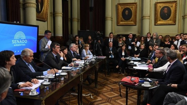 Pichetto envió una advertencia al Gobierno (Fotos: SENADO)