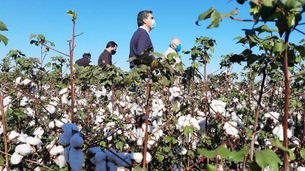 Capitanich, de visita en una planta algodonera durante la pandemia