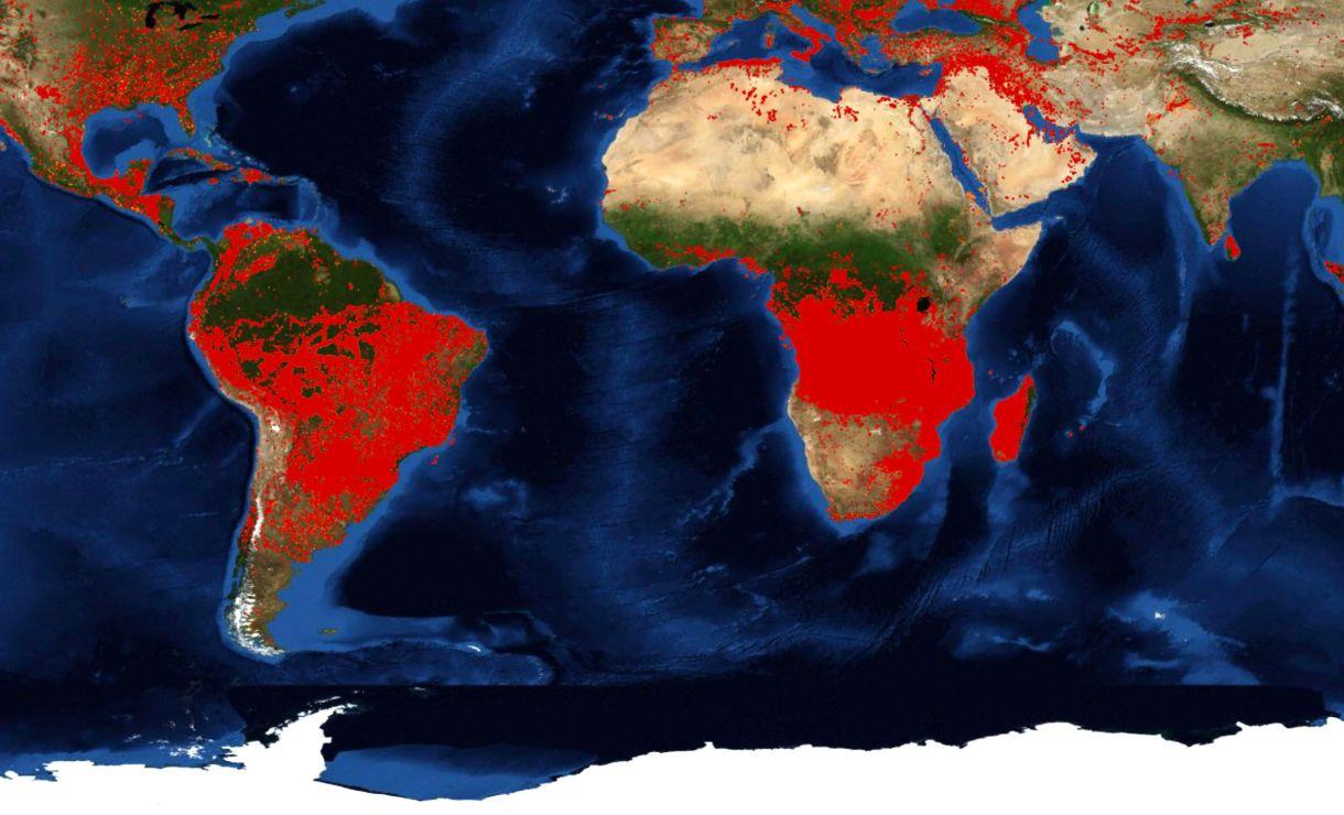 Incendios activos en el mundo según datos del satélite MODIS de la NASA(FIRMS/ NASA)