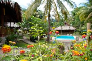 Stay At The Oasis Beach And Dive Resort For Great Satisfaction! 002