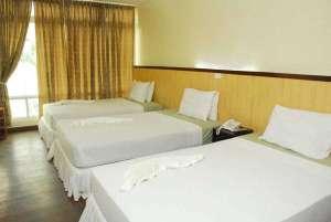 Economy Rooms At The Panda Tea Garden Suites, Tagbilaran City 006
