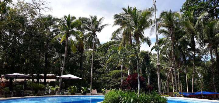 Hurry! Best Offers At The Calape Forest Resort, Calape, Bohol! 004