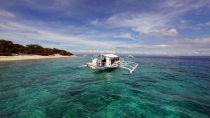 Balicasag Island Popular Dive Spot