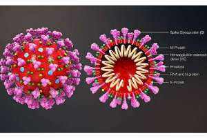Questions And Answers About Coronavirus 0001