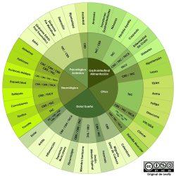 Cannabinoides y terpenos más comunes en el cannabis