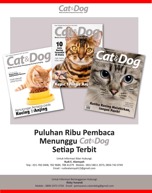Telah Hadir Majalah Cat & Dog. GRATIS Download  versi Digital Magazine