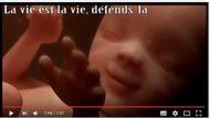 Gilles, un Youtubeur pro-vie à suivre ! dans le ventre de la maman