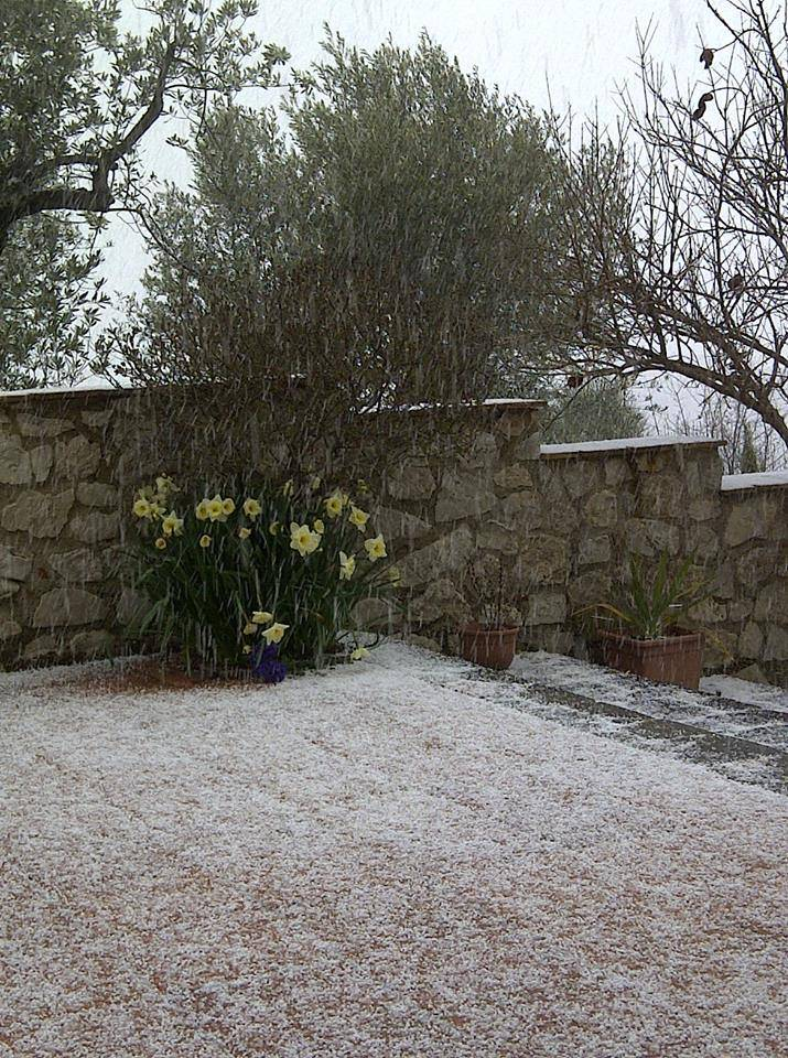 primavera_neve