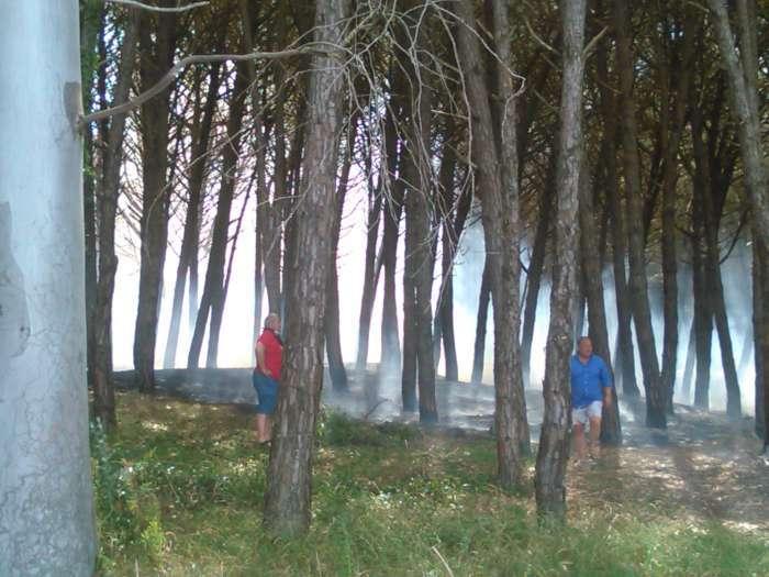 incendio_capaccio1-700