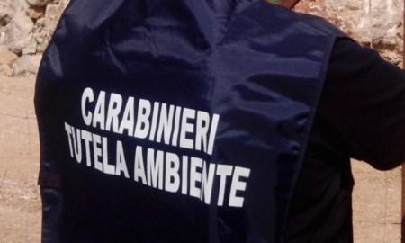 carabinieri_noe