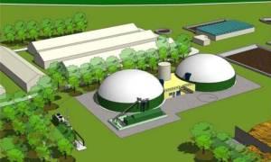 centrale_biomasse