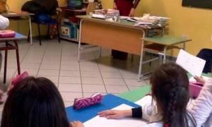 celle_bulgaro