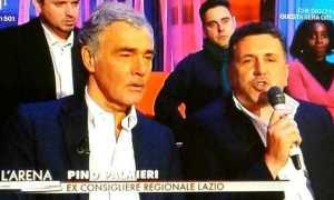 pino_palmier