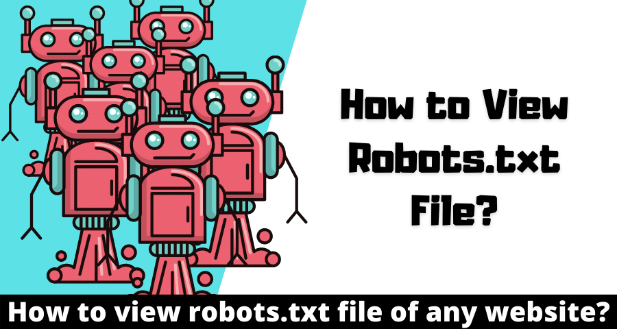 How to View Robots.txt file of any Website?