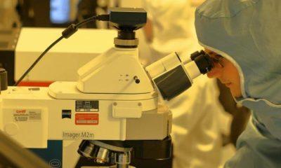 Universidades que buscan vacuna contra el Covid-19