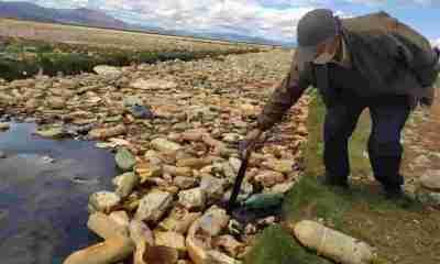 Lago Uru Uru Oruro
