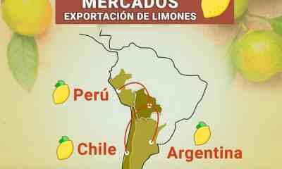 Exportación_de_limón