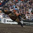 Fantastic Events for Rodeo Week in Edmonton