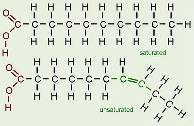 Gordura saturada - Bioquímica e Nutrição - InfoEscola