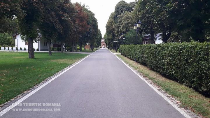 Imagini pentru parcul mogosoaia