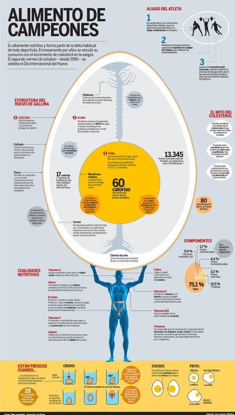 infografía sobre el huevo