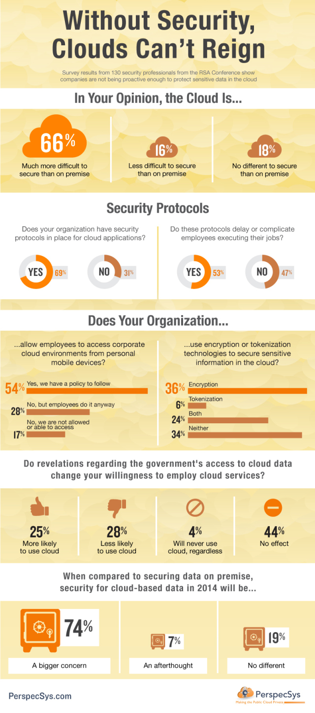 Without-Security-Clouds-Cant-Reign-Infographic