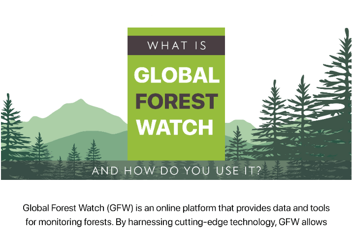 Data from landmark, recently added to global forest watch (gfw), can help bring the role of communities to the forefront of forest management. What Is Global Forest Watch And How Do You Use It Infographics Race