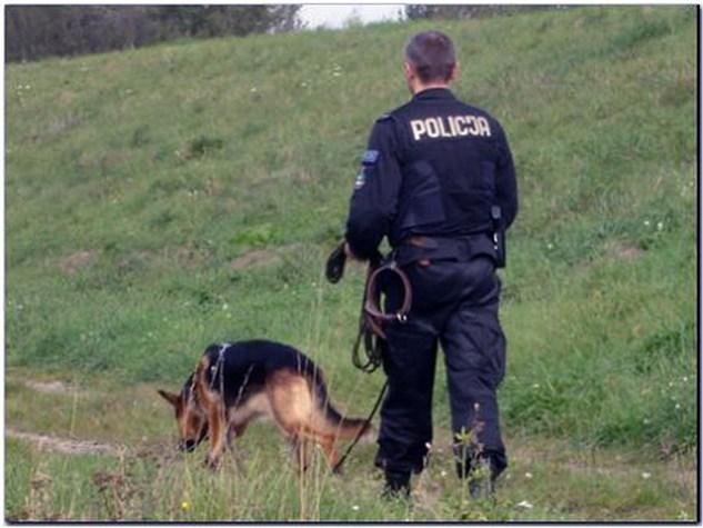 Policja-poszukiwania