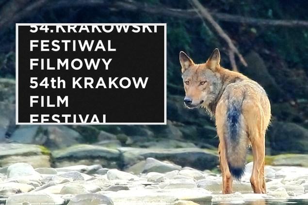 krakowski festiwal filmowy_infokrakow24