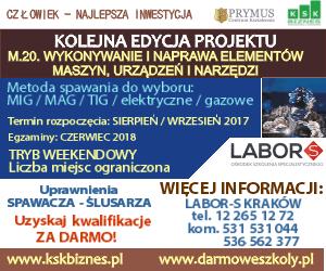 banner_LABORS-300x250_Kraków