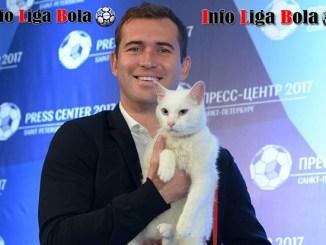 Menghebohkan Di Piala Konfederasi Kucing Jago Meramal.