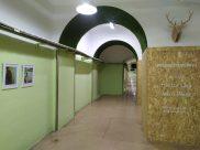 Hector Lara Hospital Valencia 6
