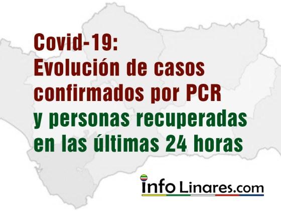 Covid-19 casos confirmados