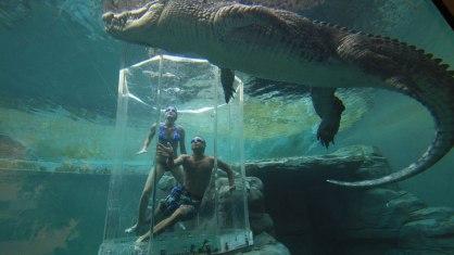 Crocosaurus-Cove-Cage-of-Death