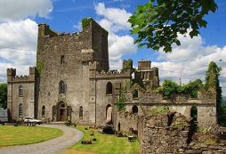 chateau leap irlande