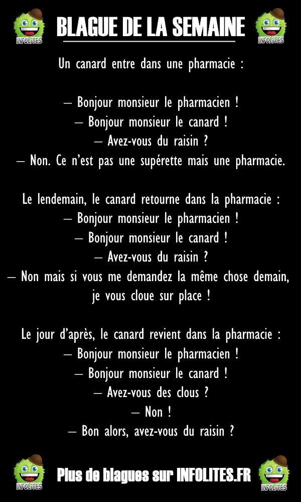 #40 - Blague : Le Canard à la Pharmacie