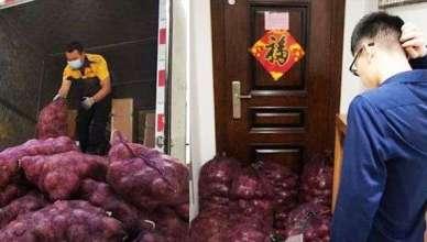 1 tonne d'onions pour se venger